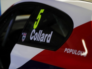 Collard-1